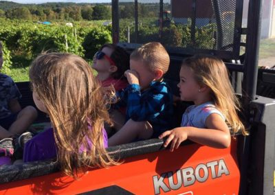 Kubota at grape farm