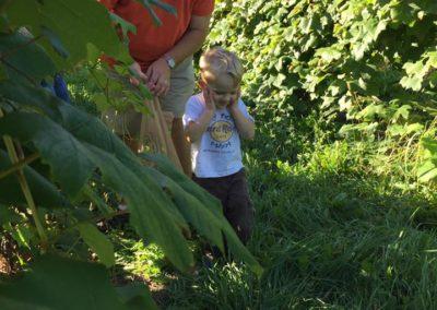 So many grapes!